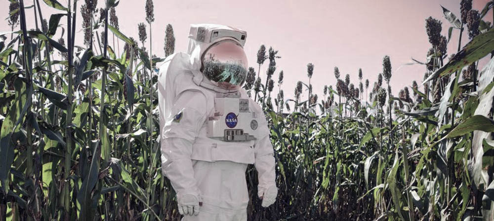 What Horticulture and Space Exploration Can Learn from Each Other